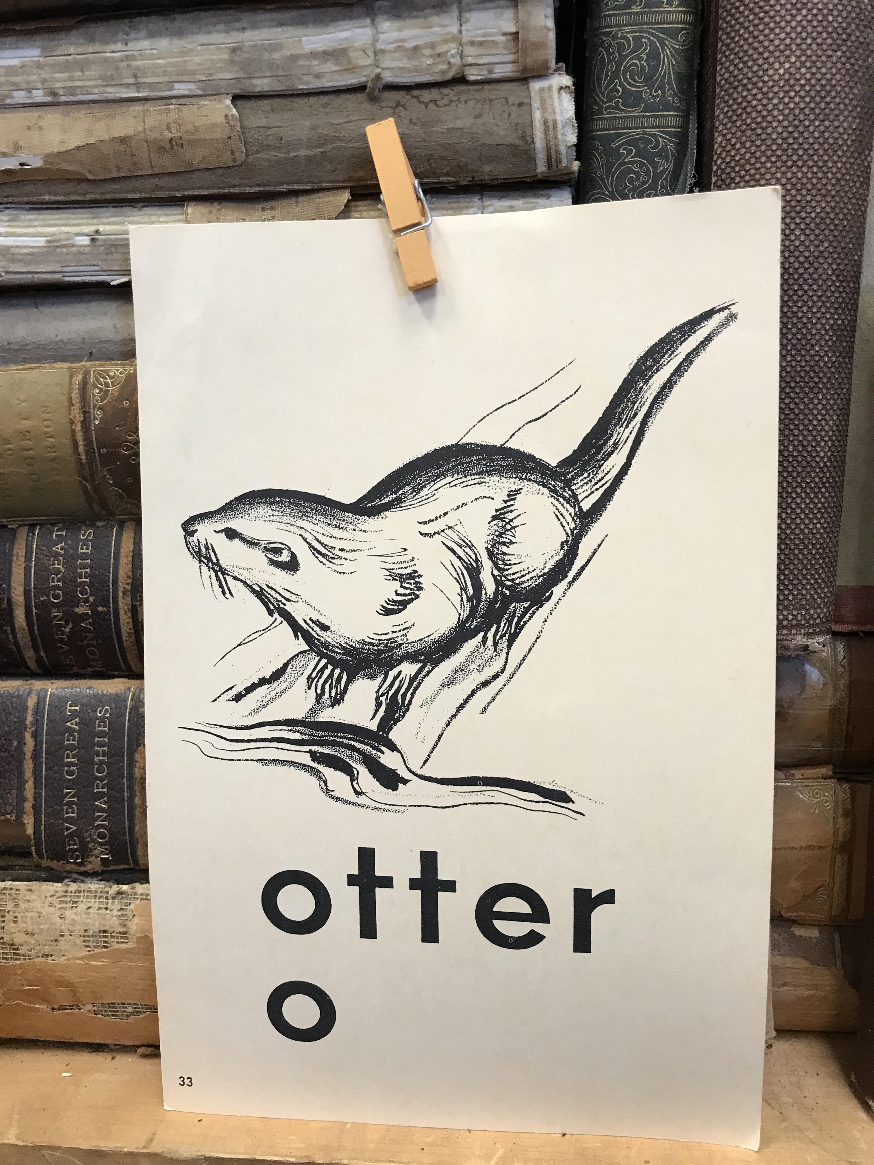 o_otter